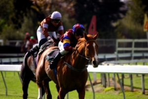 horse racing first and last equal